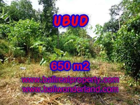 Magnificent PROPERTY 650 m2 LAND FOR SALE IN Sentral Ubud TJUB417
