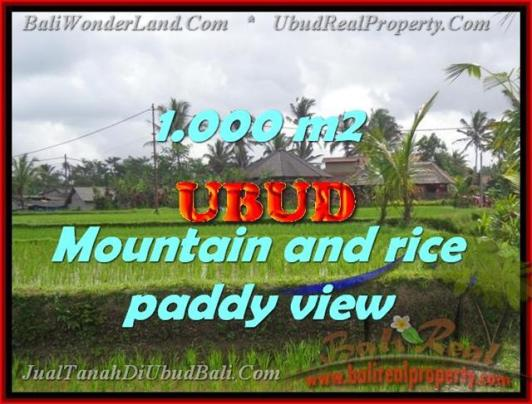Affordable PROPERTY 1,000 m2 LAND SALE IN UBUD BALI TJUB424