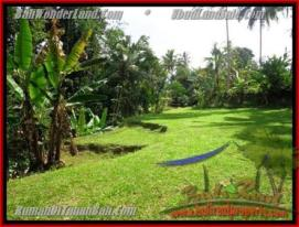 Sentral Ubud BALI LAND FOR SALE TJUB416