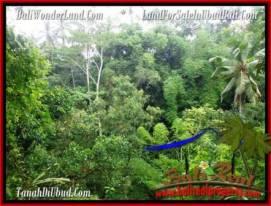 FOR SALE Exotic LAND IN Ubud Tampak Siring BALI TJUB493