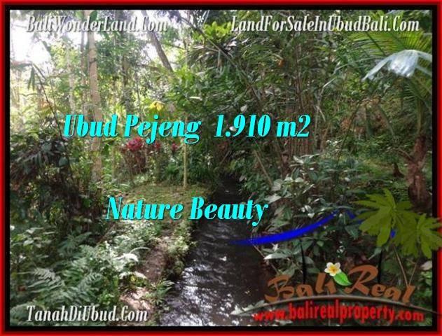 Exotic PROPERTY UBUD LAND FOR SALE TJUB504