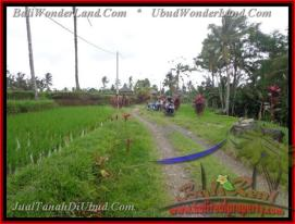 Magnificent PROPERTY 2,100 m2 LAND FOR SALE IN Ubud Tegalalang TJUB423