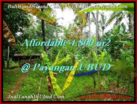 Exotic PROPERTY LAND SALE IN UBUD TJUB486