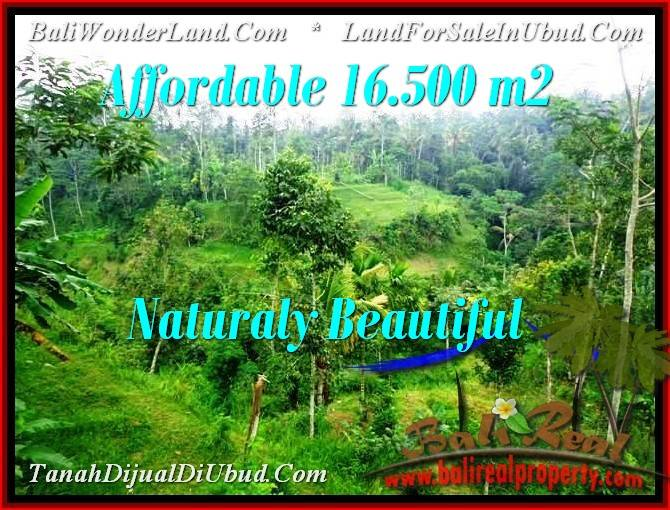 Exotic PROPERTY 16,500 m2 LAND FOR SALE IN Ubud Tampak Siring TJUB494