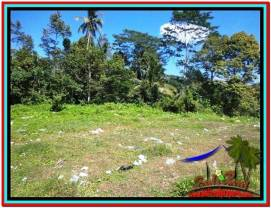 FOR SALE Affordable LAND IN Ubud Tampak Siring BALI TJUB517