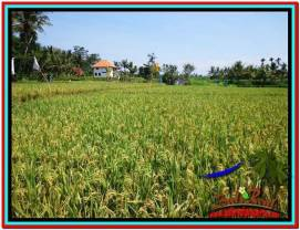 Beautiful 4,000 m2 LAND FOR SALE IN Sentral Ubud TJUB527