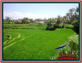 Affordable PROPERTY 1,500 m2 LAND IN Ubud Tegalalang FOR SALE TJUB528
