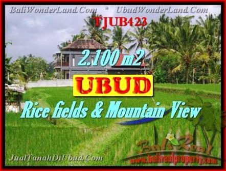 FOR SALE Affordable PROPERTY 2,100 m2 LAND IN UBUD BALI TJUB423
