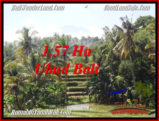 Exotic PROPERTY LAND IN UBUD FOR SALE TJUB549