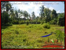 Beautiful PROPERTY 15,000 m2 LAND FOR SALE IN Ubud Tegalalang BALI TJUB551