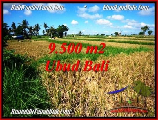 Affordable PROPERTY 9,500 m2 LAND FOR SALE IN Sentral Ubud BALI TJUB548