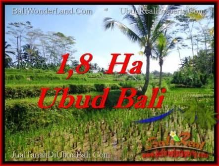 Magnificent 16,000 m2 LAND IN UBUD BALI FOR SALE TJUB553