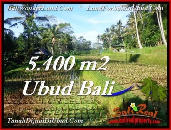 FOR SALE Magnificent 5,400 m2 LAND IN UBUD BALI TJUB554