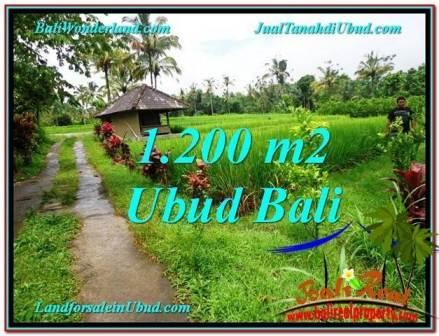 FOR SALE Beautiful PROPERTY 1,200 m2 LAND IN UBUD TJUB559