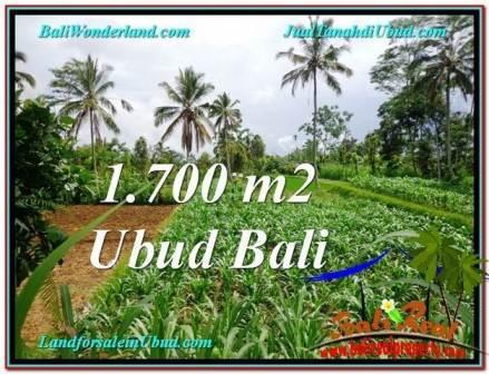 Bali LAND FOR SALE IN UBUD TJUB560