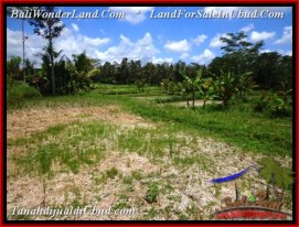 FOR SALE Magnificent 700 m2 LAND IN UBUD BALI TJUB534