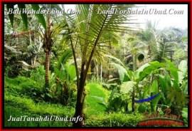 FOR SALE Magnificent 579 m2 LAND IN UBUD BALI TJUB538