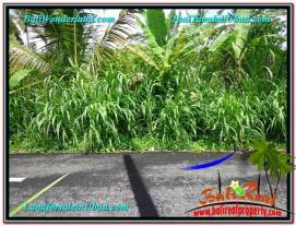 FOR SALE Magnificent 1,700 m2 LAND IN UBUD BALI TJUB560