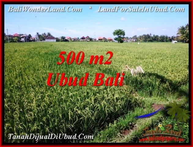Magnificent PROPERTY 500 m2 LAND SALE IN Sentral Ubud TJUB545