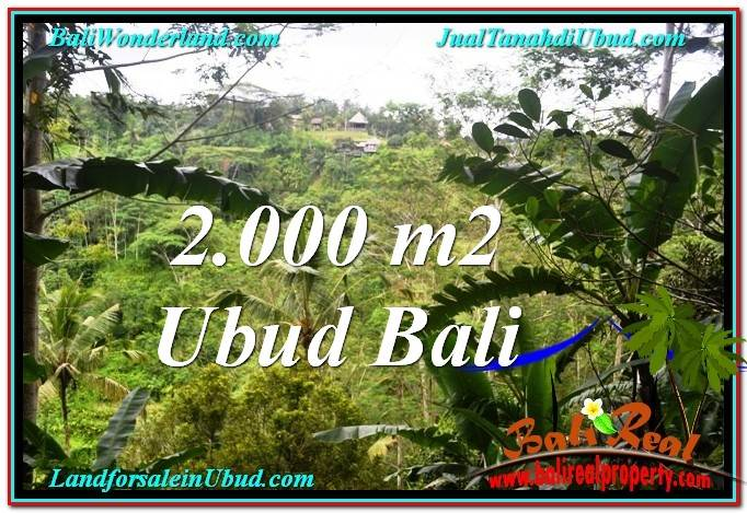 FOR SALE Exotic 2,000 m2 LAND IN UBUD BALI TJUB573