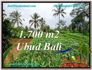 Affordable PROPERTY LAND SALE IN UBUD TJUB560