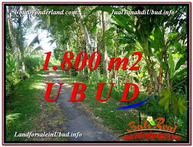 Affordable 1,800 m2 LAND IN UBUD BALI FOR SALE TJUB597