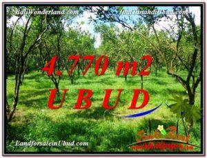 Beautiful 4,770 m2 LAND IN UBUD BALI FOR SALE TJUB598