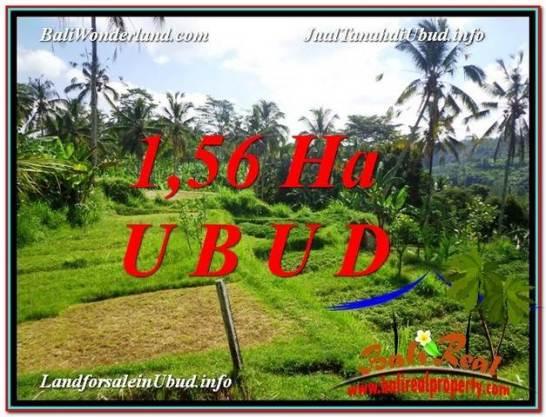 Magnificent PROPERTY Ubud Payangan 15,600 m2 LAND FOR SALE TJUB601
