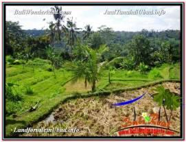 FOR SALE Affordable LAND IN Ubud Payangan BALI TJUB601
