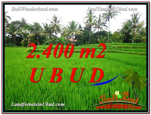 Magnificent PROPERTY 2,400 m2 LAND SALE IN Sentral Ubud TJUB587