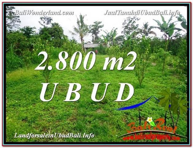 Exotic 2,800 m2 LAND IN UBUD BALI FOR SALE TJUB592
