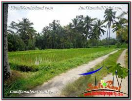 Affordable 3,200 m2 LAND FOR SALE IN UBUD BALI TJUB594