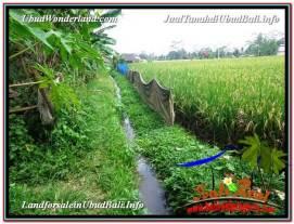 Exotic 3,500 m2 LAND IN UBUD BALI FOR SALE TJUB596