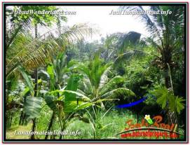 Magnificent 1,800 m2 LAND FOR SALE IN Ubud Payangan TJUB597
