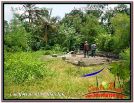 Beautiful PROPERTY 1,150 m2 LAND IN Ubud Pejeng FOR SALE TJUB576