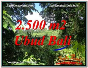 FOR SALE 2,500 m2 LAND IN UBUD TJUB605