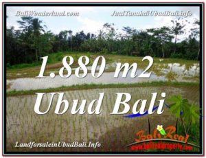 Beautiful 1,880 m2 LAND SALE IN UBUD BALI TJUB613