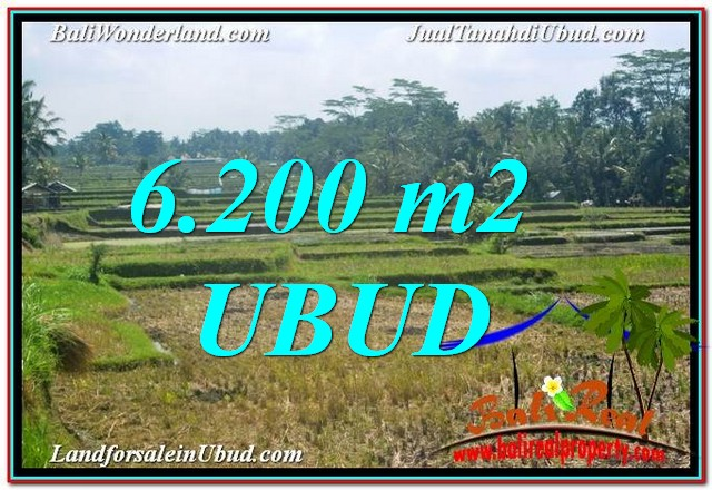 LAND FOR SALE IN Ubud Payangan TJUB631