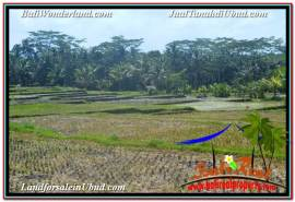 Magnificent LAND IN UBUD FOR SALE TJUB631