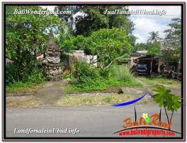 FOR SALE Magnificent PROPERTY LAND IN UBUD TJUB605