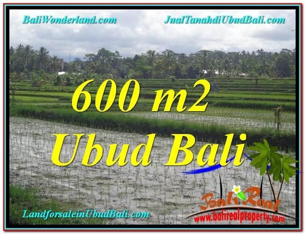 Beautiful PROPERTY 600 m2 LAND SALE IN Ubud Tegalalang TJUB607