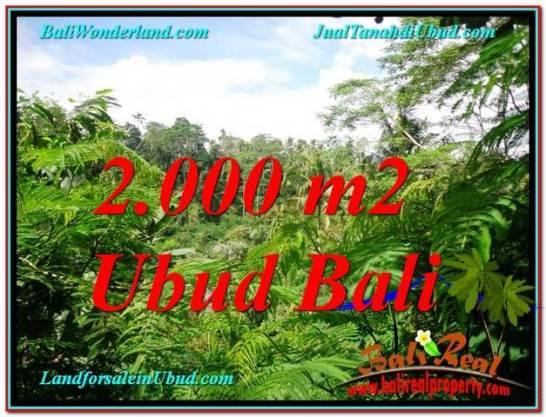 Affordable UBUD BALI 2,000 m2 LAND FOR SALE TJUB611