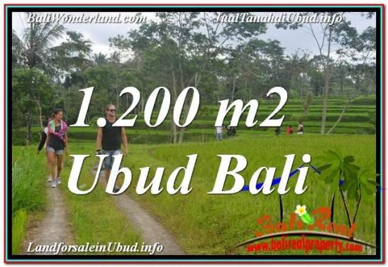 Magnificent PROPERTY 1,200 m2 LAND FOR SALE IN Ubud Tegalalang TJUB624