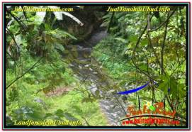 FOR SALE Beautiful PROPERTY 2,000 m2 LAND IN Ubud Pejeng TJUB625