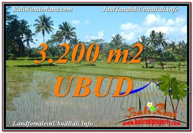 Exotic LAND SALE IN Ubud Payangan BALI TJUB628
