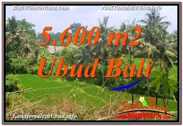 Exotic PROPERTY 5,600 m2 LAND FOR SALE IN Sentral / Ubud Center TJUB636
