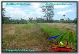 FOR SALE Magnificent LAND IN Sentral / Ubud Center BALI TJUB638