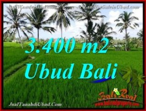 Exotic 3,400 m2 LAND FOR SALE IN UBUD TJUB656
