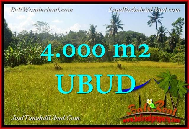 Beautiful 4,000 m2 LAND SALE IN UBUD BALI TJUB661