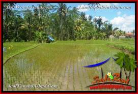 FOR SALE Magnificent PROPERTY 4,900 m2 LAND IN UBUD BALI TJUB652